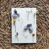 celestin-herbier-carte-bleu-creme-jaune-hortensia
