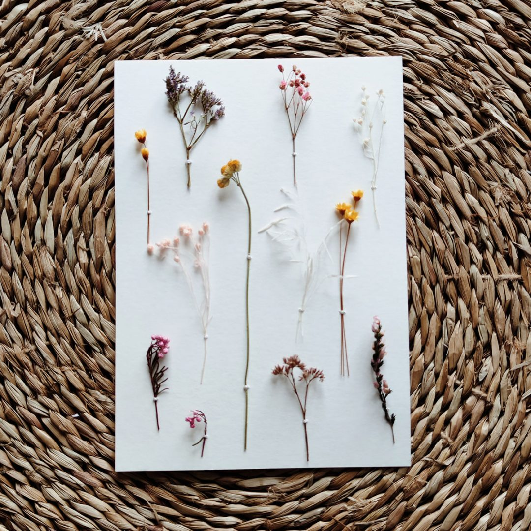 hipolyte-herbier-petite-affiche-rose-jaune-blanc