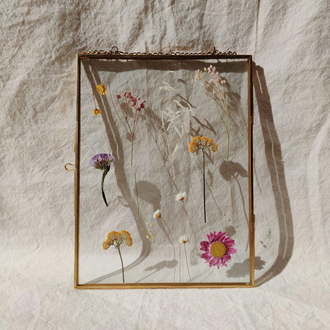 grand-herbier-gustave-fleurs-sechees-cadre-laiton